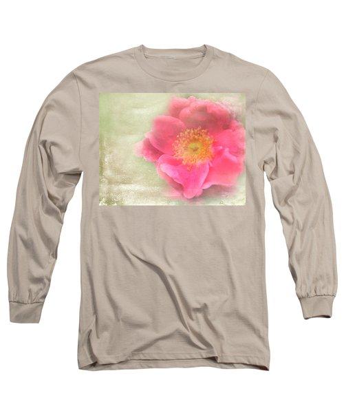 Heirloom Rose Long Sleeve T-Shirt by Catherine Alfidi