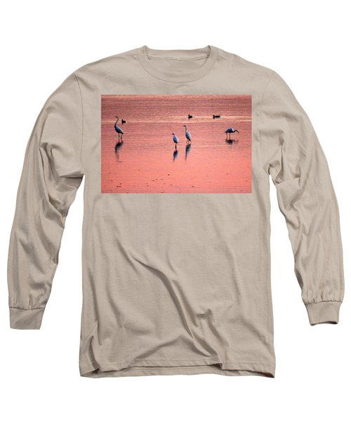 Herons At Sunrise Long Sleeve T-Shirt