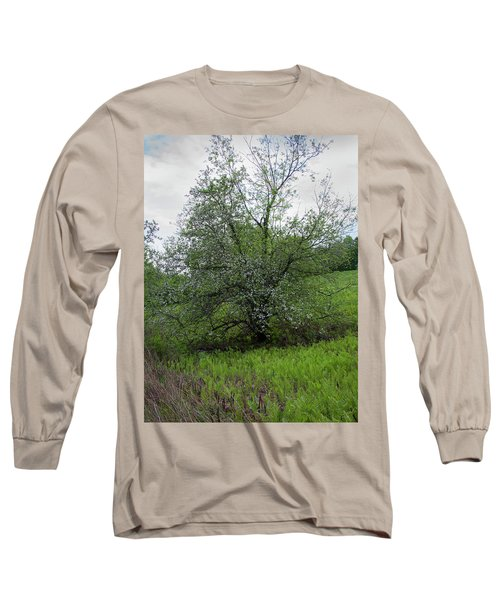 Long Sleeve T-Shirt featuring the photograph Hillside Lady by Michael Friedman