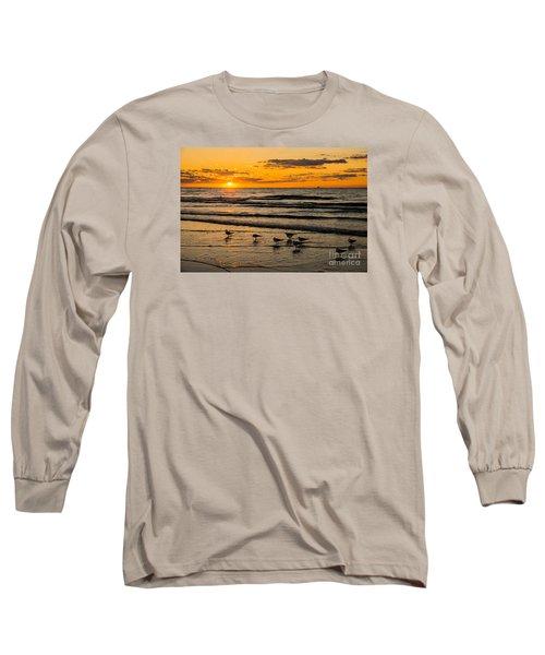 Hilton Head Seagulls Long Sleeve T-Shirt by Paul Mashburn