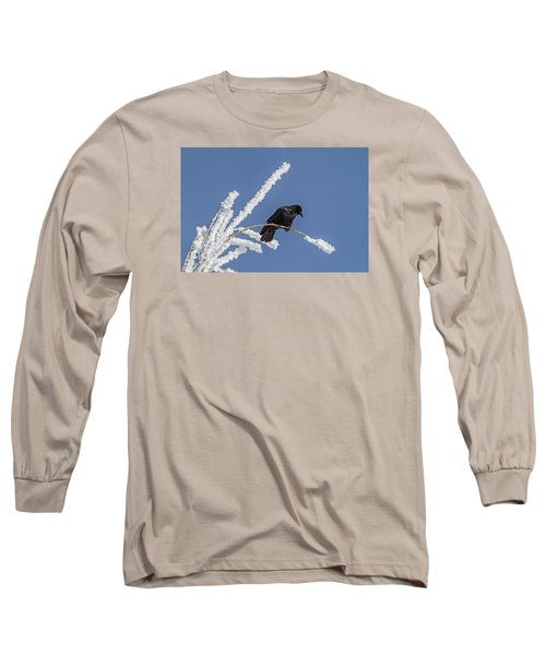 Hoarfrost And The Crow Long Sleeve T-Shirt by Alana Thrower