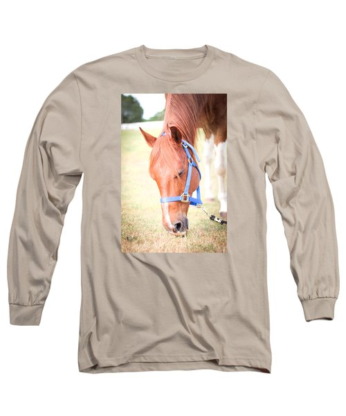 Long Sleeve T-Shirt featuring the photograph Horse Eating In A Pasture In Vibrant Color by Kelly Hazel