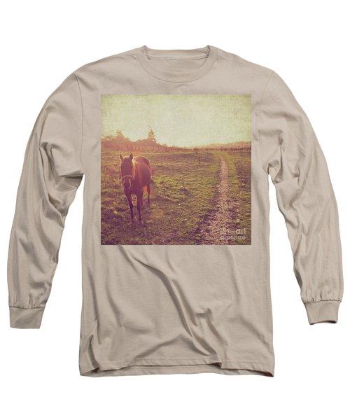 Horse Long Sleeve T-Shirt by Lyn Randle