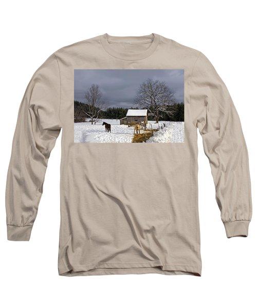 Horses In Snow Long Sleeve T-Shirt