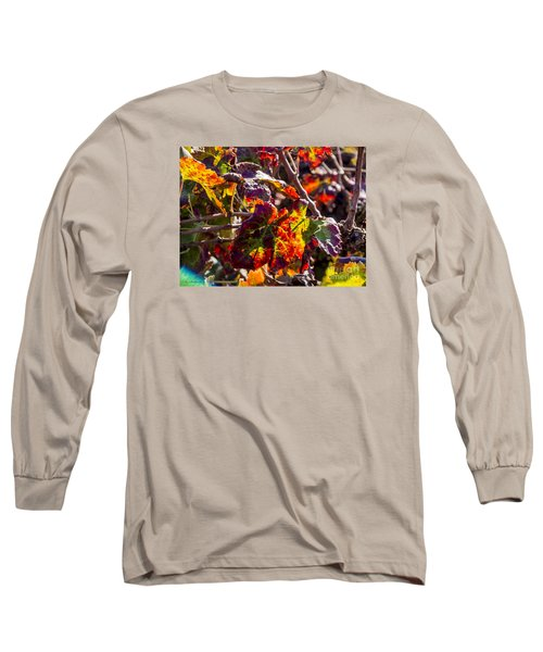Hot Autumn Colors In The Vineyard 04 Long Sleeve T-Shirt by Arik Baltinester