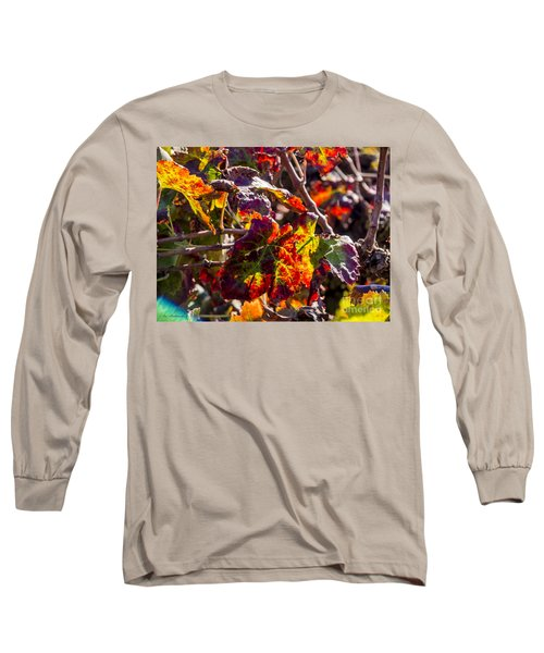 Long Sleeve T-Shirt featuring the photograph Hot Autumn Colors In The Vineyard 04 by Arik Baltinester