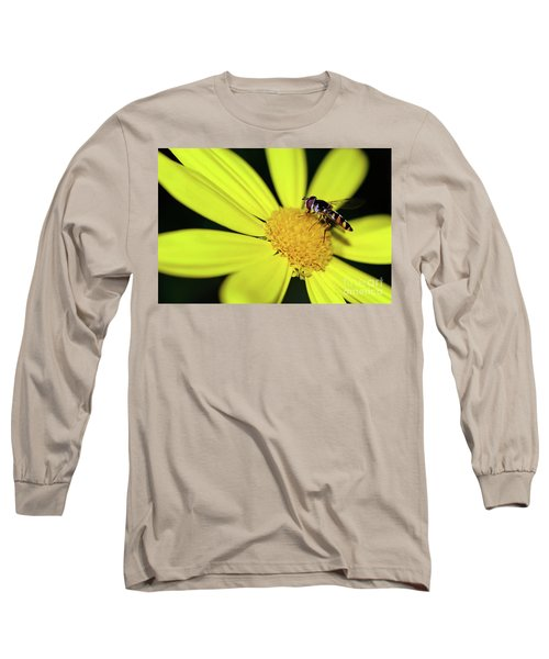 Long Sleeve T-Shirt featuring the photograph Hoverfly On Bright Yellow Daisy By Kaye Menner by Kaye Menner