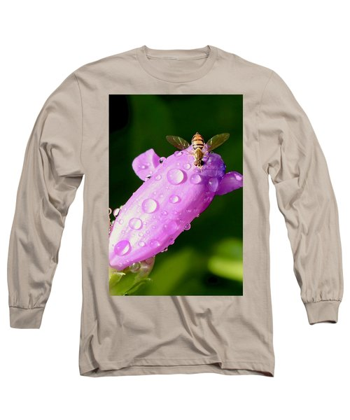 Hoverfly On Pink Flower Long Sleeve T-Shirt