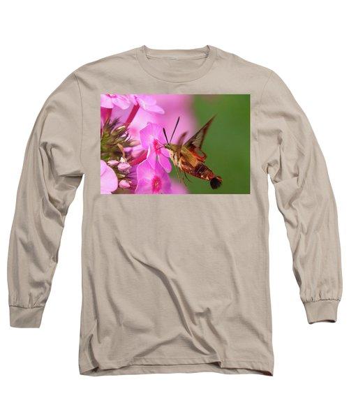 Hummingbird Moth Feeding 1 Long Sleeve T-Shirt