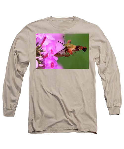 Hummingbird Moth Feeding 2 Long Sleeve T-Shirt