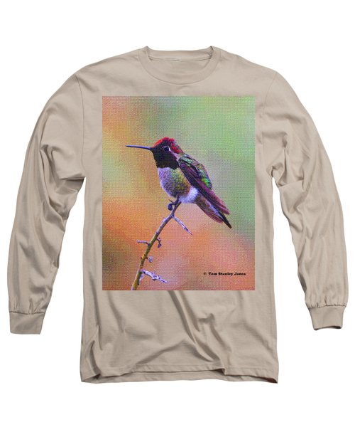 Hummingbird On A Stick Long Sleeve T-Shirt