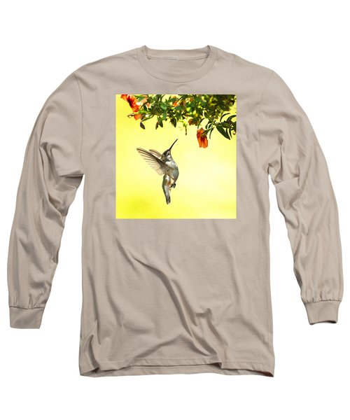 Hummingbird Under The Floral Canopy Long Sleeve T-Shirt