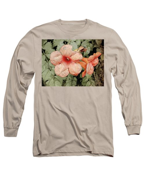 Hummingbird Vine Long Sleeve T-Shirt