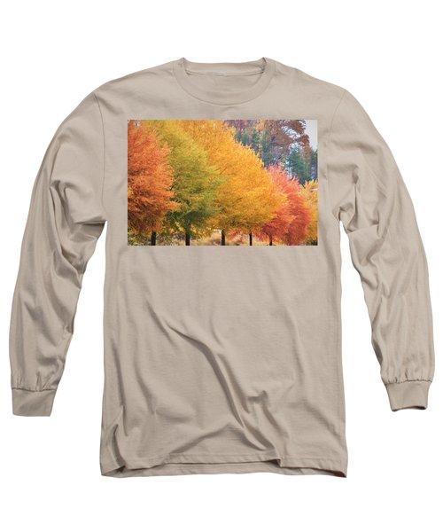 October Trees Long Sleeve T-Shirt