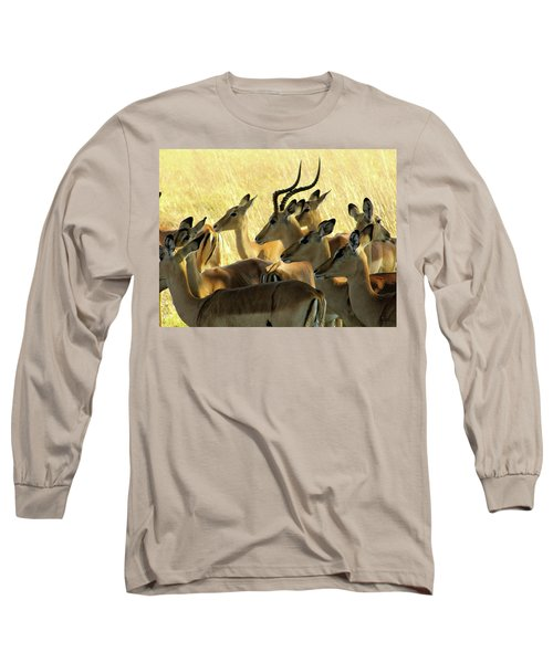 Impalas In The Plains Long Sleeve T-Shirt