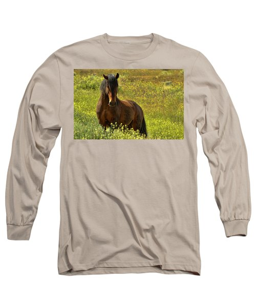In The Name Of Pride Long Sleeve T-Shirt