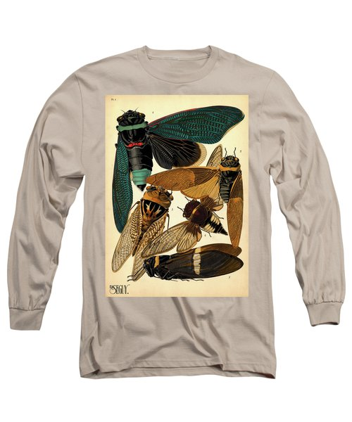 Insects, Plate-1 Long Sleeve T-Shirt