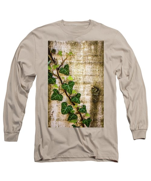 Ivy On The Fence Post Long Sleeve T-Shirt