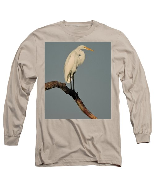 January Egret Long Sleeve T-Shirt by Peg Toliver