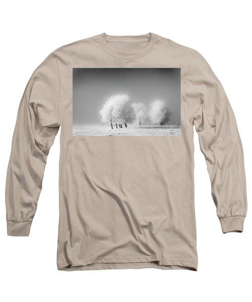 January Frost Long Sleeve T-Shirt by Dan Jurak