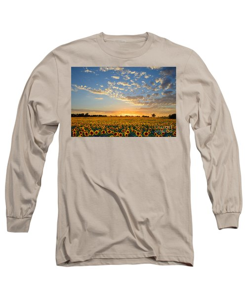 Kansas Sunflowers At Sunset Long Sleeve T-Shirt