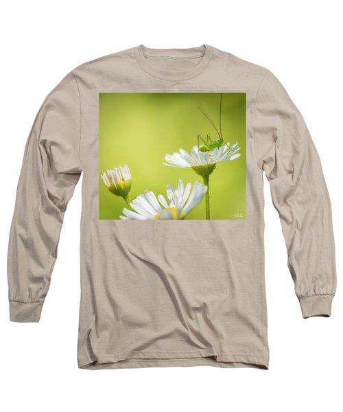 Katydid Long Sleeve T-Shirt