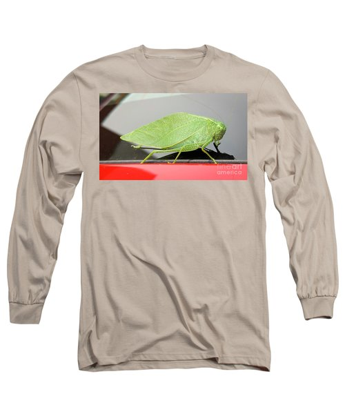 Katydids- Bush Crickets Long Sleeve T-Shirt