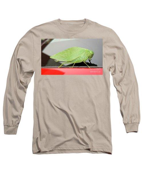Katydids- Bush Crickets Long Sleeve T-Shirt
