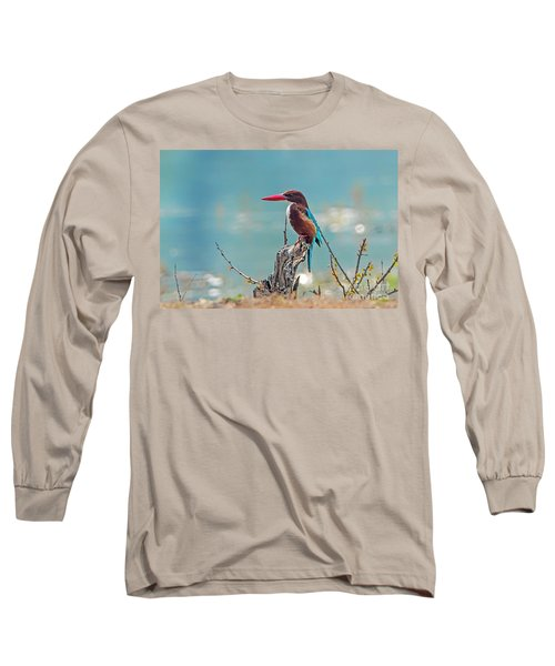 Kingfisher On A Stump Long Sleeve T-Shirt by Pravine Chester
