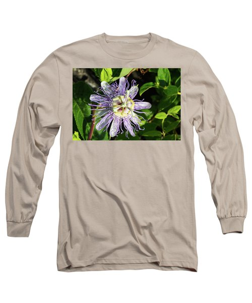 Kissed By The Sun Long Sleeve T-Shirt