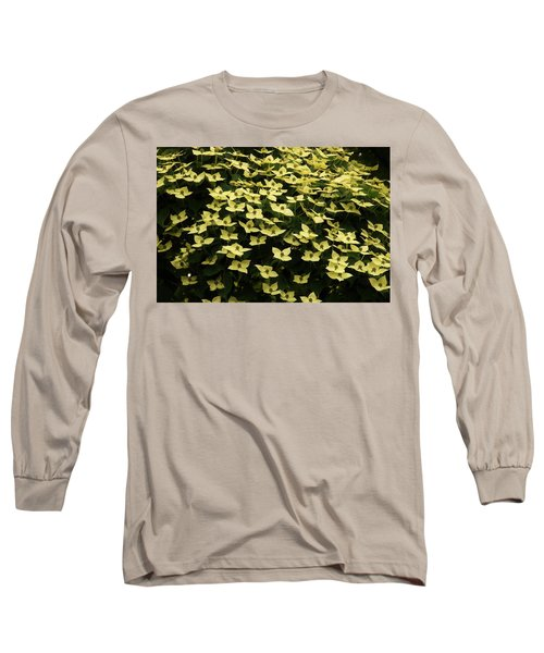 Kousa Dogwood Blooms Long Sleeve T-Shirt