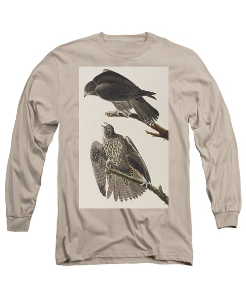 Labrador Falcon Long Sleeve T-Shirt by John James Audubon