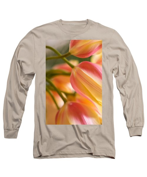 Labrynth Of Spring Long Sleeve T-Shirt by Mike Reid