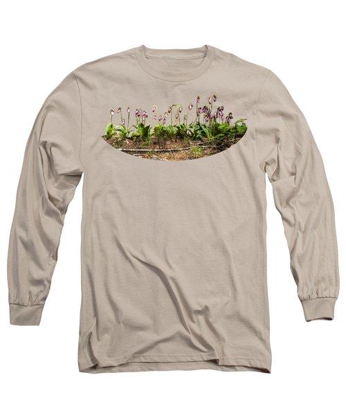 Lady Slippers Long Sleeve T-Shirt by Daniel Hebard