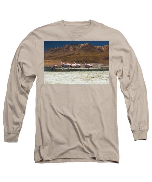 Laguna Colorada, Andes, Bolivia Long Sleeve T-Shirt