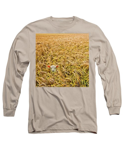 Lamb With Barley Long Sleeve T-Shirt by Meirion Matthias