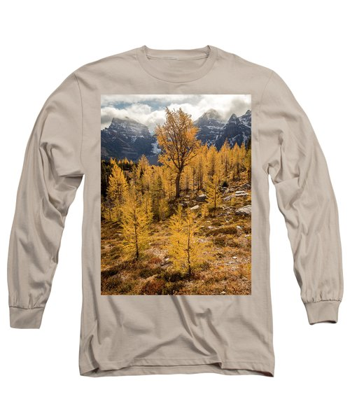 Larch Family Long Sleeve T-Shirt