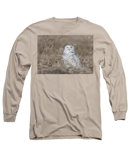 Last Year Of The Snowy Owls... Long Sleeve T-Shirt