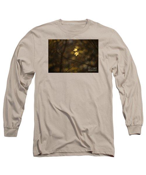 Late Autumn Light Long Sleeve T-Shirt by Diane Diederich