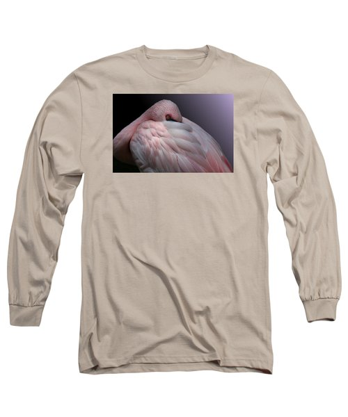 Lesser Flamingo Resting Long Sleeve T-Shirt