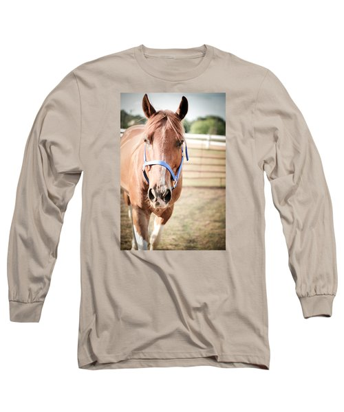 Long Sleeve T-Shirt featuring the photograph Light Brown Horse Named Flash by Kelly Hazel