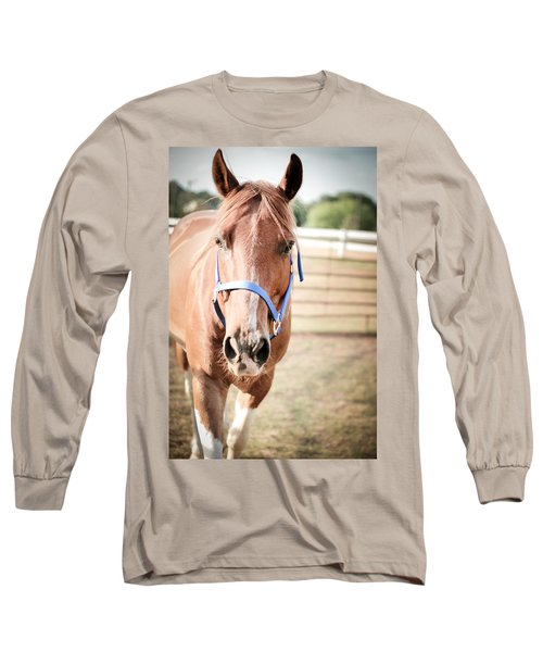Light Brown Horse Named Flash Long Sleeve T-Shirt