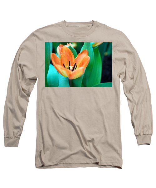 Lily #4 Long Sleeve T-Shirt