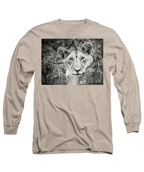 Lioness Portrait Long Sleeve T-Shirt