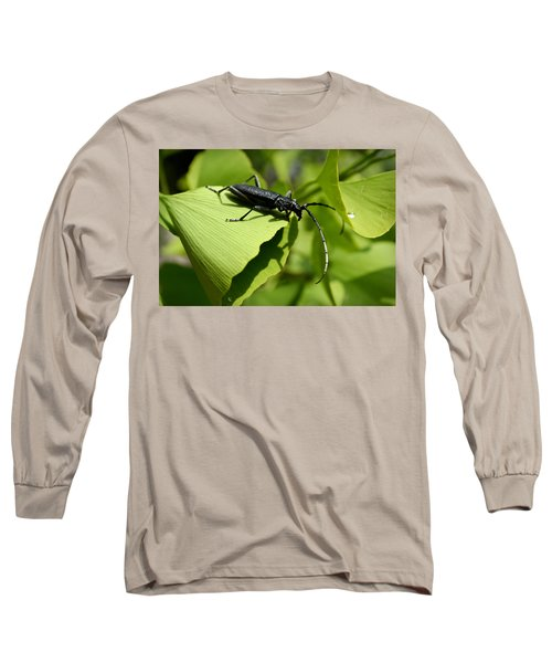 Little Beetle Long Sleeve T-Shirt