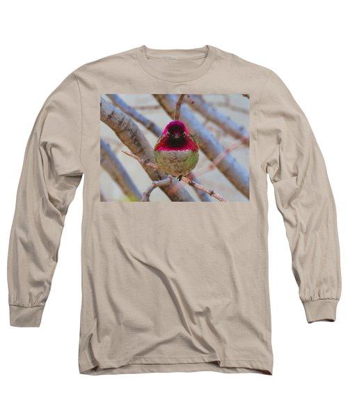 Little Jewel All Aglow Long Sleeve T-Shirt