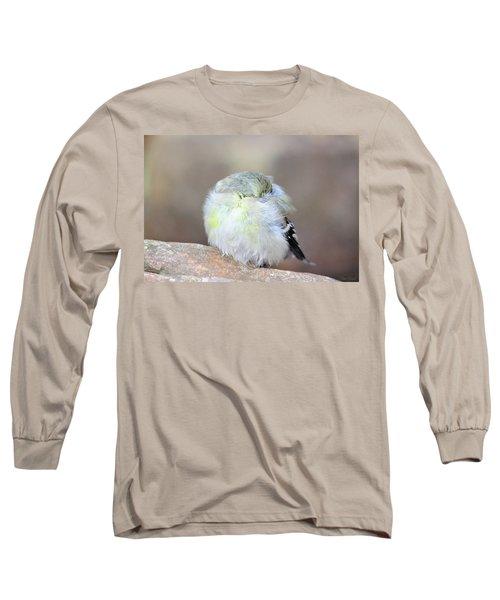 Little Sleeping Goldfinch Long Sleeve T-Shirt