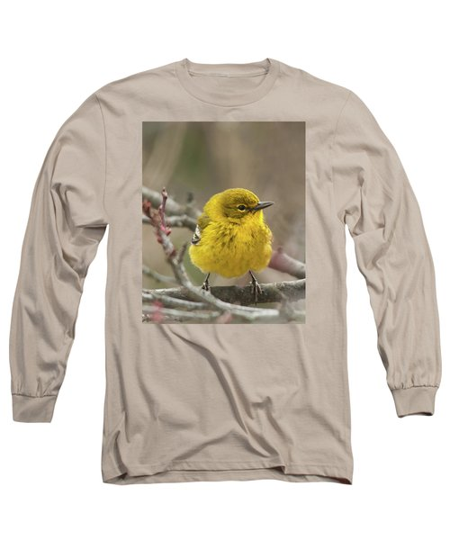 Long Sleeve T-Shirt featuring the photograph Little Yellow by Lara Ellis