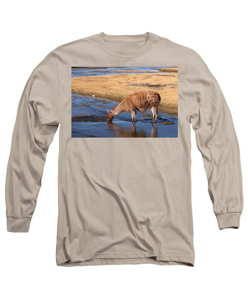 Llama Drinking In River Long Sleeve T-Shirt