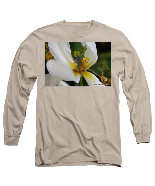 Long Sleeve T-Shirt featuring the photograph London White Tulip by Jolanta Anna Karolska